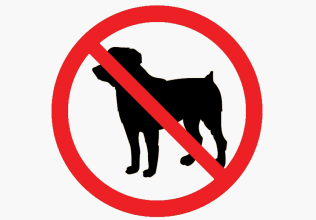 No pets holiday cottages