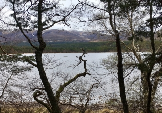 Cairngorms holiday cottages